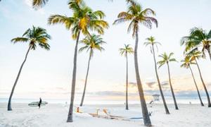Beach shot at dawn